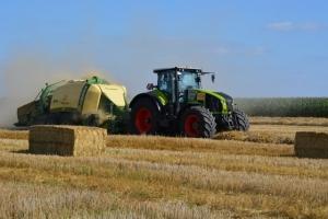 Getreide - Bild 10